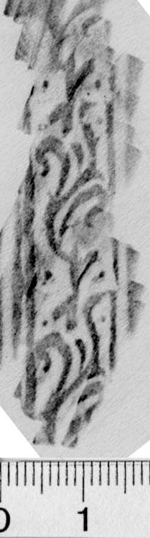 Image Description for https://www.hist-einband.de/Bilder/BSB/MIG/images/m0407505.jpg