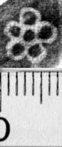 Image Description for https://www.hist-einband.de/Bilder/BSB/MIG/images/m0525202.jpg
