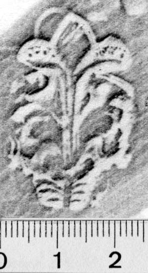 Image Description for https://www.hist-einband.de/Bilder/BSB/MIG/images/m0548102.jpg