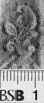 Image Description for https://www.hist-einband.de/Bilder/BSB/MIG/images/m1205101.jpg