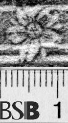 Image Description for https://www.hist-einband.de/Bilder/BSB/MIG/images/m1306204.jpg