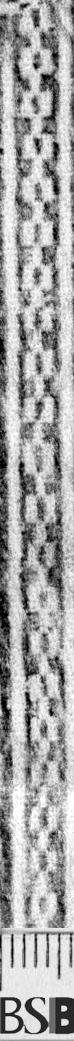 Image Description for https://www.hist-einband.de/Bilder/BSB/MIG/images/m1702601.jpg