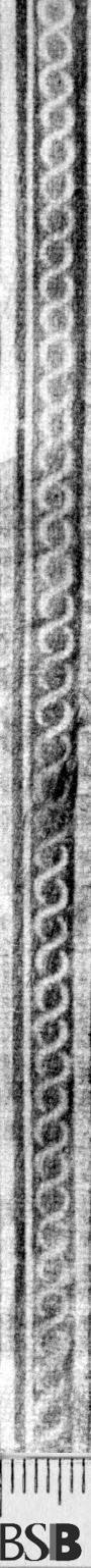 Image Description for https://www.hist-einband.de/Bilder/BSB/MIG/images/m1901103.jpg