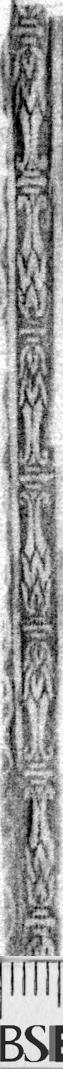 Image Description for https://www.hist-einband.de/Bilder/BSB/MIG/images/m1901902.jpg
