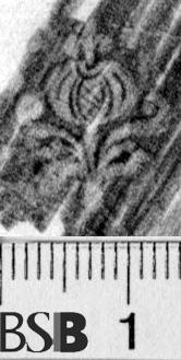 Image Description for https://www.hist-einband.de/Bilder/BSB/MIG/images/m1903603.jpg