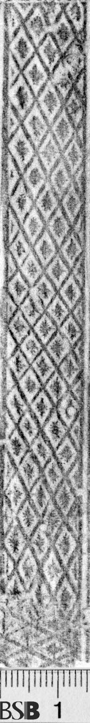 Image Description for https://www.hist-einband.de/Bilder/BSB/MIG/images/m1912901.jpg