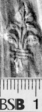 Image Description for https://www.hist-einband.de/Bilder/BSB/MIG/images/m1943506.jpg