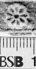 Image Description for https://www.hist-einband.de/Bilder/BSB/MIG/images/m1944406.jpg
