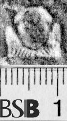 Image Description for https://www.hist-einband.de/Bilder/BSB/MIG/images/m1946205.jpg