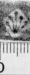 Image Description for https://www.hist-einband.de/Bilder/BSB/MIG/images/m4306610.jpg