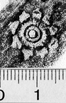 Image Description for https://www.hist-einband.de/Bilder/BSB/MIG/images/m4600502.jpg