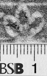 Image Description for https://www.hist-einband.de/Bilder/BSB/MIG/images/m4710403.jpg