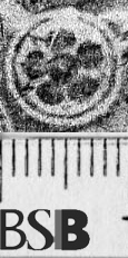 Image Description for https://www.hist-einband.de/Bilder/BSB/MIG/images/m4718507.jpg