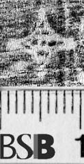 Image Description for https://www.hist-einband.de/Bilder/BSB/MIG/images/m4718605.jpg