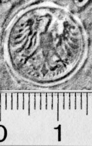 Image Description for https://www.hist-einband.de/Bilder/BSB/MIG/images/m5805103.jpg
