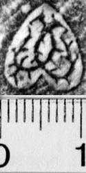 Image Description for https://www.hist-einband.de/Bilder/BSB/MIG/images/m5808802.jpg