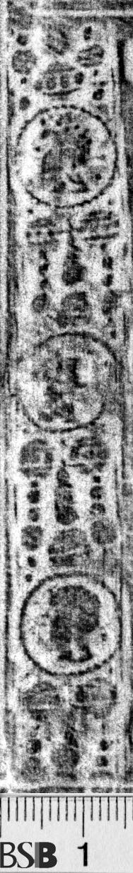 Image Description for https://www.hist-einband.de/Bilder/BSB/MIG/images/m6532804.jpg