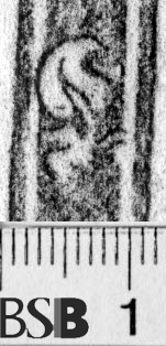 Image Description for https://www.hist-einband.de/Bilder/BSB/MIG/images/m6543004.jpg