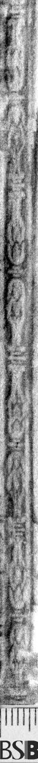 Image Description for https://www.hist-einband.de/Bilder/BSB/MIG/images/m6643104.jpg
