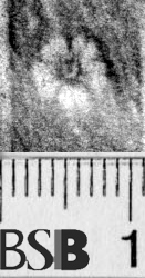 Image Description for https://www.hist-einband.de/Bilder/BSB/MIG/images/m6643107.jpg