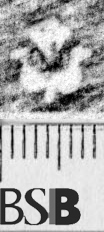 Image Description for https://www.hist-einband.de/Bilder/BSB/MIG/images/m6662507.jpg