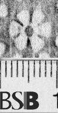 Image Description for https://www.hist-einband.de/Bilder/BSB/MIG/images/m7151605.jpg