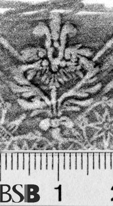 Image Description for https://www.hist-einband.de/Bilder/BSB/MIG/images/m7188502.jpg