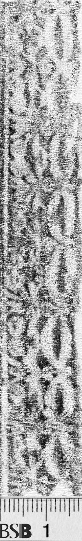 Image Description for https://www.hist-einband.de/Bilder/BSB/MIG/images/m9812703.jpg