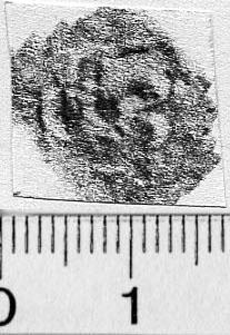 Image Description for https://www.hist-einband.de/Bilder/BSB/MIG/images/m9900104.jpg