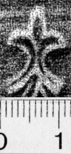 Image Description for https://www.hist-einband.de/Bilder/BSB/MIG/images/m9900504.jpg