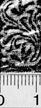 Image Description for https://www.hist-einband.de/Bilder/BSB/MIG/images/m9909706.jpg