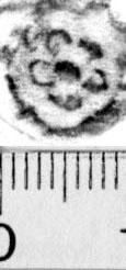 Image Description for https://www.hist-einband.de/Bilder/BSB/MIG/images/m9913106.jpg