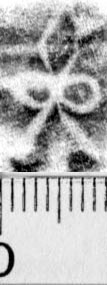 Image Description for https://www.hist-einband.de/Bilder/BSB/MIG/images/m9917004.jpg