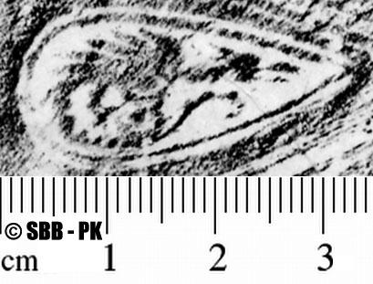Image Description for https://www.hist-einband.de/Bilder/SBB/MIG/ebpics/images/bw508/019/bw508w02.jpg