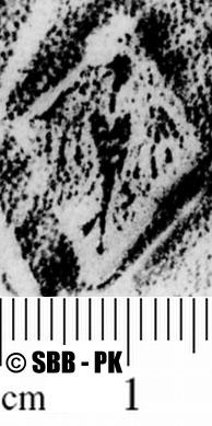 Image Description for https://www.hist-einband.de/Bilder/SBB/MIG/ebpics/images/bw601/004/bw601w02.jpg