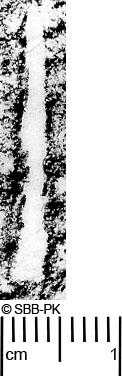 Image Description for https://www.hist-einband.de/Bilder/SBB/MIG/ebpics/images/bw764/002/bw764w06.jpg