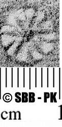 Image Description for https://www.hist-einband.de/Bilder/SBB/MIG/ebpics/images/bw823/009/bw823w06.jpg
