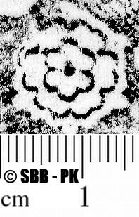 Image Description for https://www.hist-einband.de/Bilder/SBB/MIG/ebpics/images/bw826/004/bw826w04.jpg