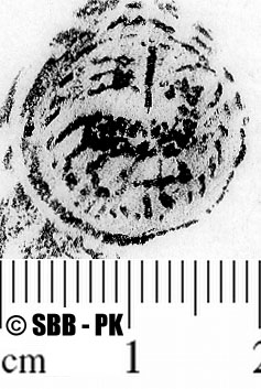 Image Description for https://www.hist-einband.de/Bilder/SBB/MIG/ebpics/images/bw832/002/bw832w04.jpg