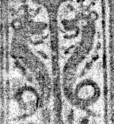 Image Description for https://www.hist-einband.de/Bilder/SBB/MIG/terminologie/bilder/1301801.jpg