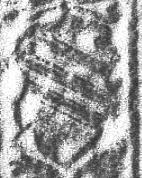 Image Description for https://www.hist-einband.de/Bilder/SBB/MIG/terminologie/bilder/r02679b.jpg