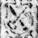 Image Description for https://www.hist-einband.de/Bilder/SBB/MIG/terminologie/bilder/r03676b.jpg
