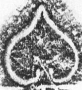 Image Description for https://www.hist-einband.de/Bilder/SBB/MIG/terminologie/bilder/s00043.jpg